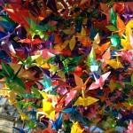 closeup-cranes